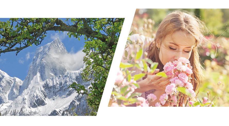 Soglio Duft der Berge
