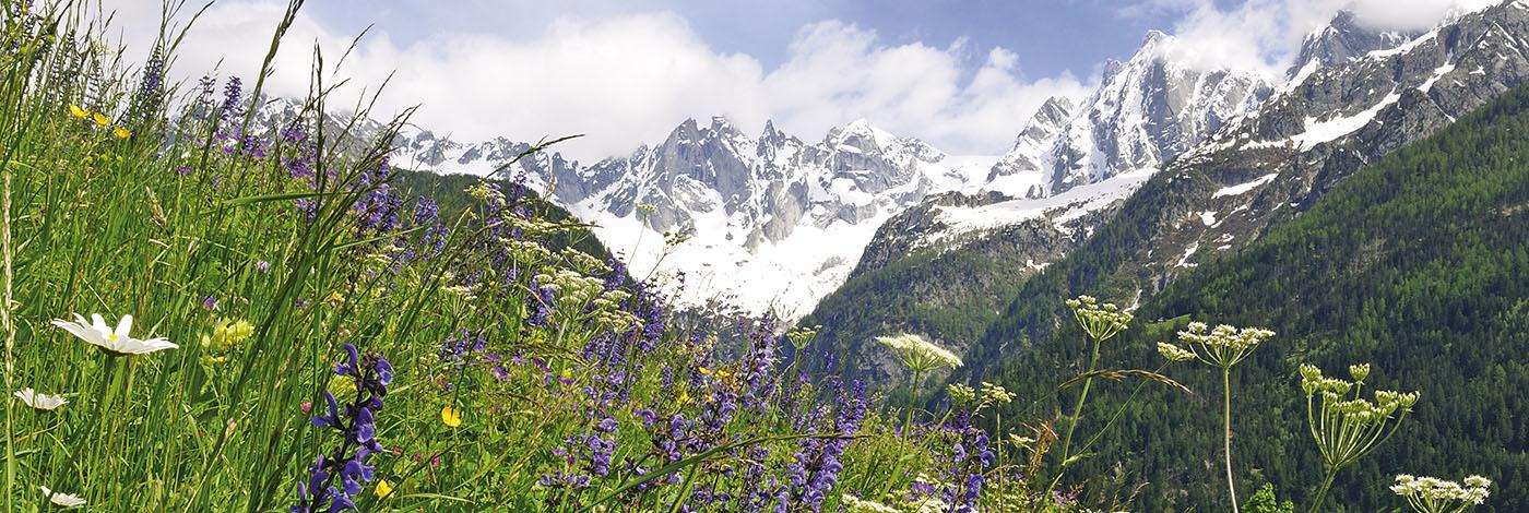 Solgio Landschaft